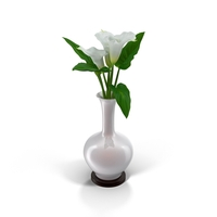 Calla Lilies in Vase Object
