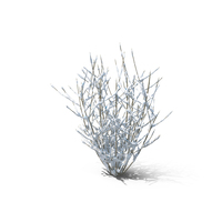 Bare Bush Object