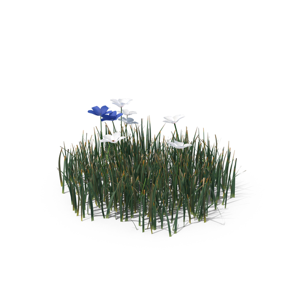 Simple Grass (Small) Object