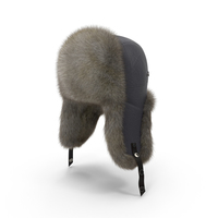 Trapper Hat Object