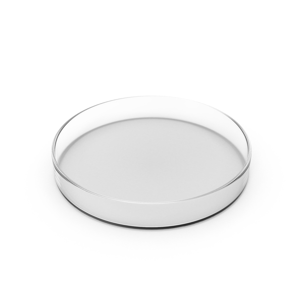 Glass Petri Dish Object